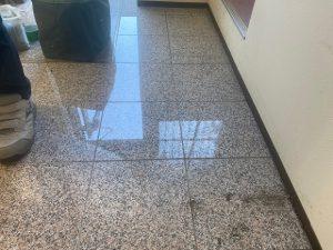 事務所玄関エポキシテラゾーフロア施工 - 埼玉県